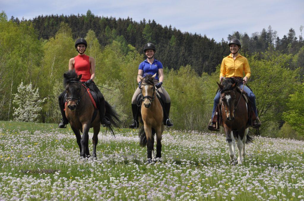 Reiten Urlaub Reiturlaub Österreich