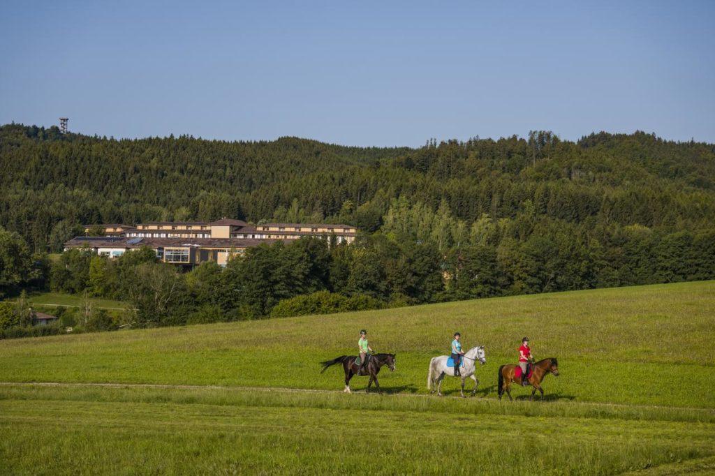 Urlaub mit Pferd Reiturlaub Österreich