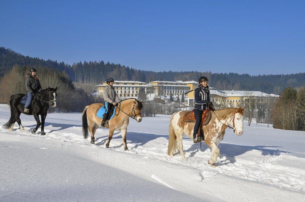 Reiten Urlaub Österreich