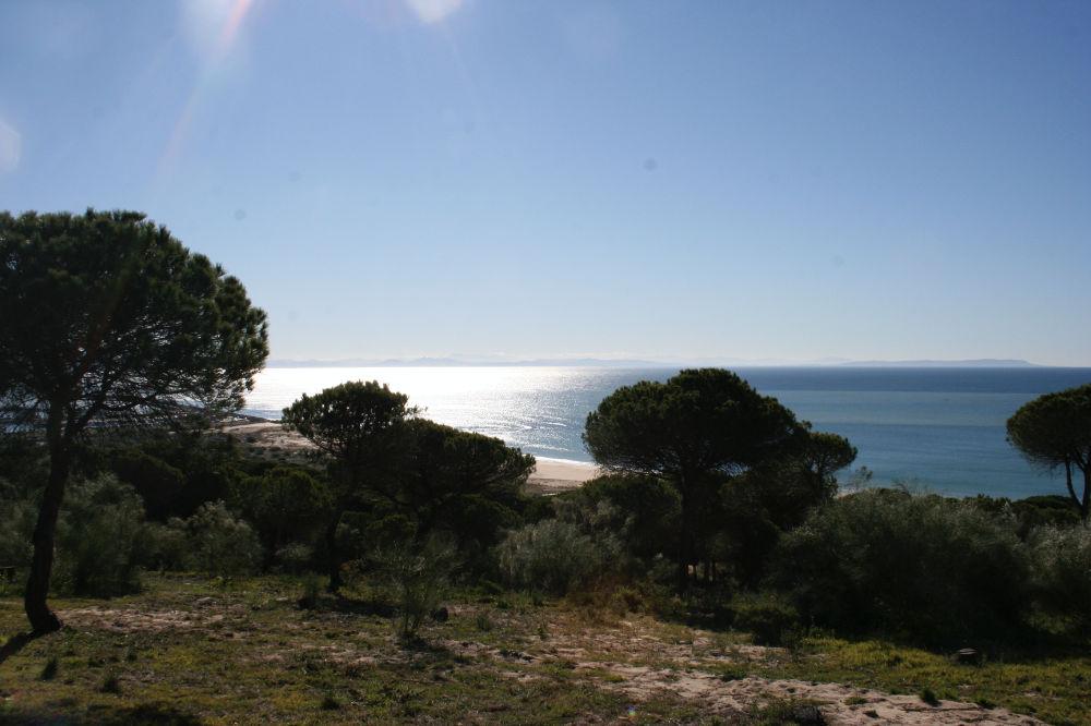Naturpark La Breña y Marisma