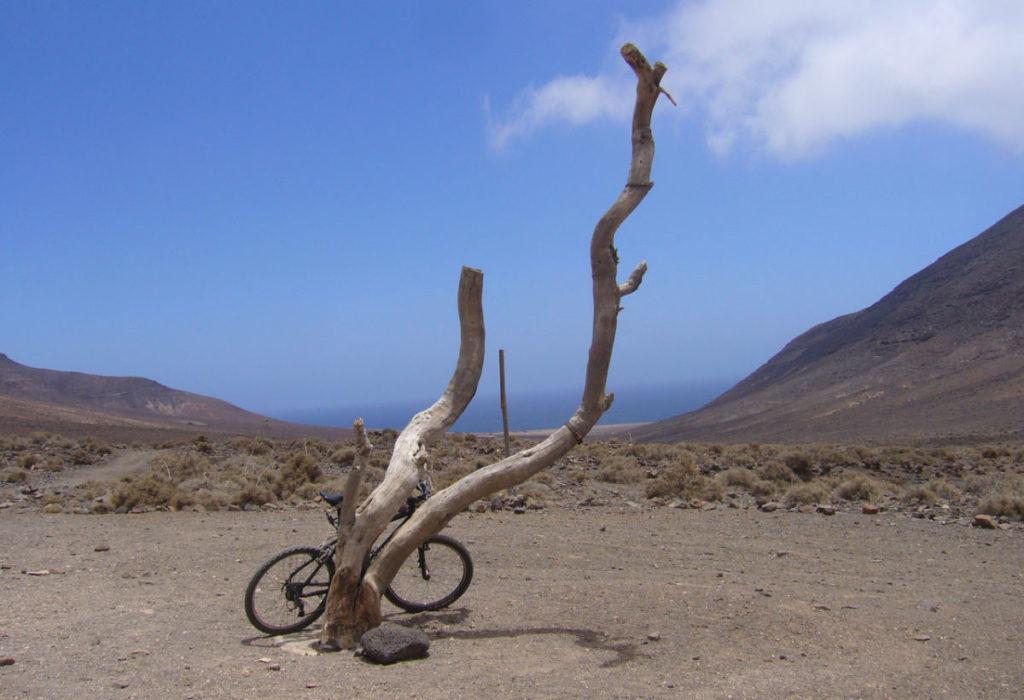 Mountainbike Fuerteventura