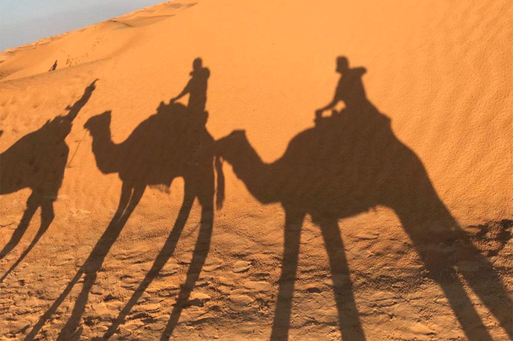 Wüste Tunesien Kamelritt