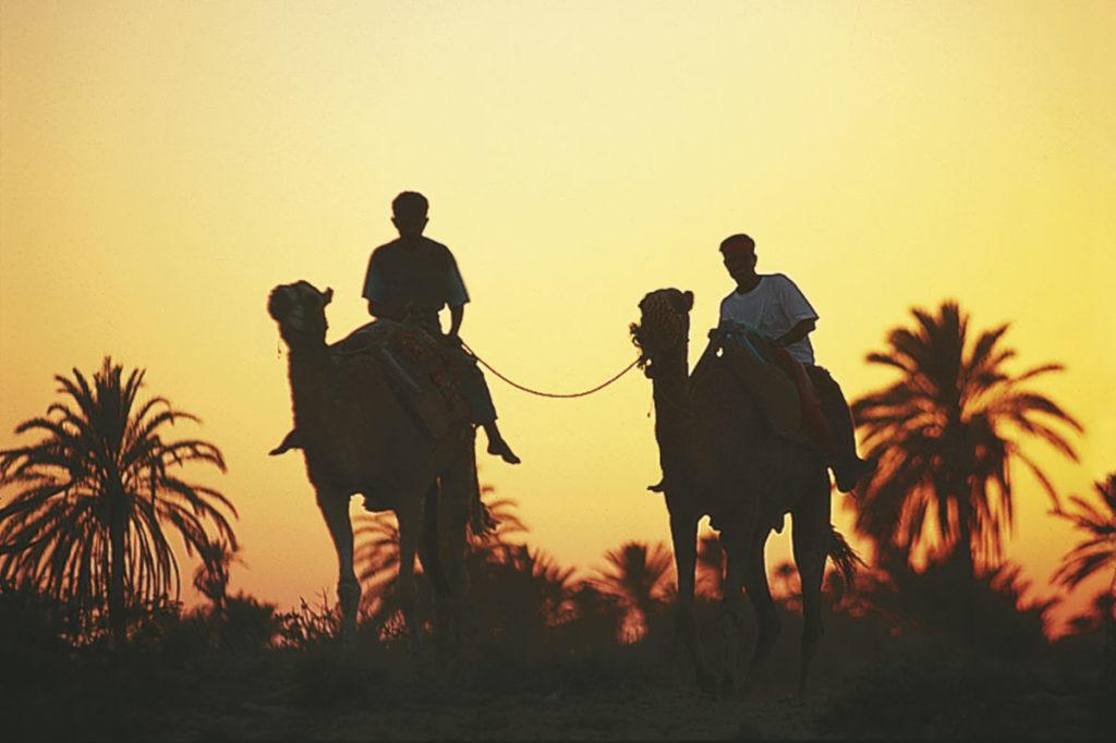 Kamel Wüste Tunesien
